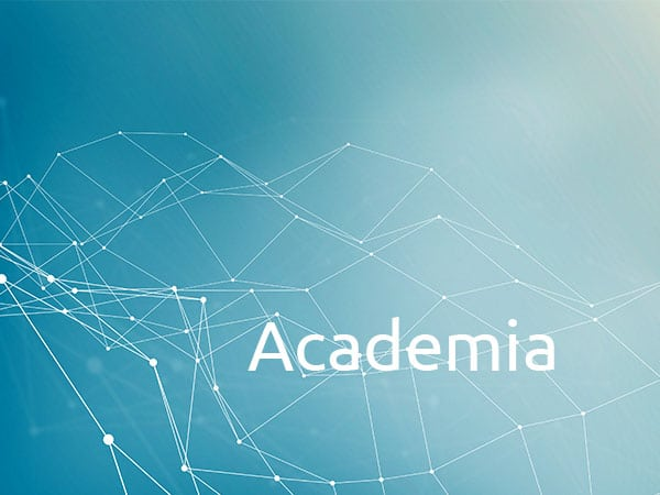 Digital Nomads Observatory and Academia